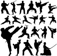 jigsaw mats for martial arts